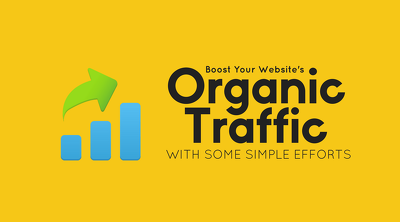 Organic Keyword Targeted Search Engine Traffic From Google