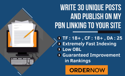 Write 30 Unique Posts On Permanent PBN Links With TF up to 25