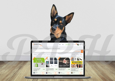 Add your image to this Macbook mockup with Jet the Kelpie