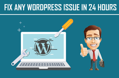 Fix any wordpress issue or error or bug in 24 hours