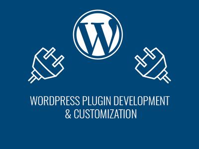 Develop a Custom Wordpress Plugin or Widget