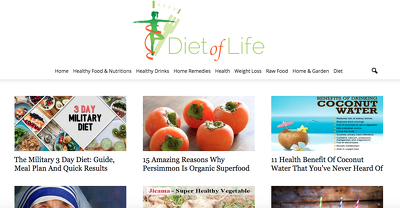 Publish a guest post on Diet Of Life DietOfLife.com DA62, PA49