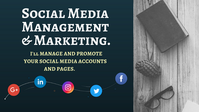 Manage and grow your social media accounts and pages for 5 days