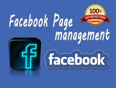Manage and grow your facebook page for 5 days with full service