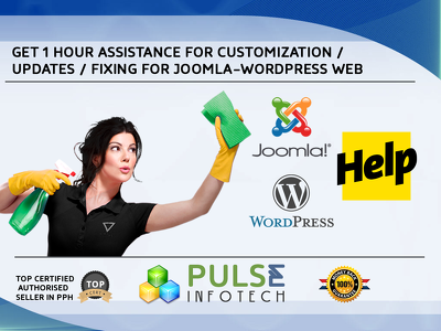 Provide 1 hour WordPress/Joomla customization/updates assistance