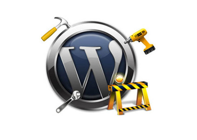Fix any bugs/issues/errors in WordPress by WordPress Ninja