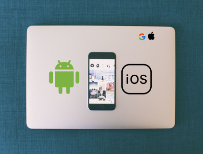 I will convert your website to an Android or iOS APP