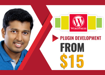 Do any wordpress plugin development or modification to plugins