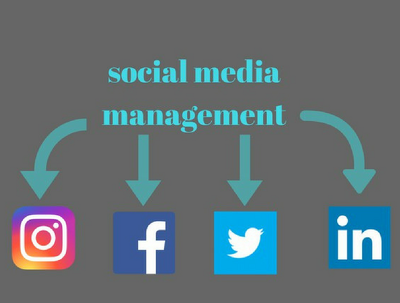 Provide Social Media Marketing Service