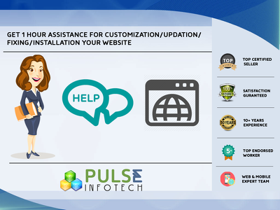 Provide 1 hour assistance for customization/updates for your Web