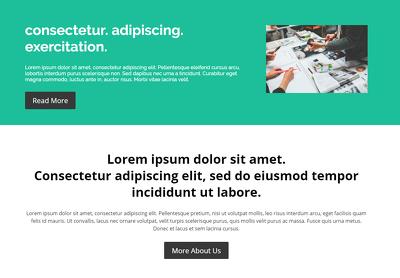 Provide a responsive business website on Divi theme (live demo)