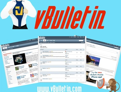 I can setup vbulletin forum at your Domain