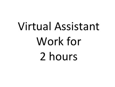 Provide 1 hour of data entry / customer service