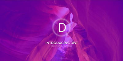 Give you one hour Video Lesson on DIVI Wordpress Theme