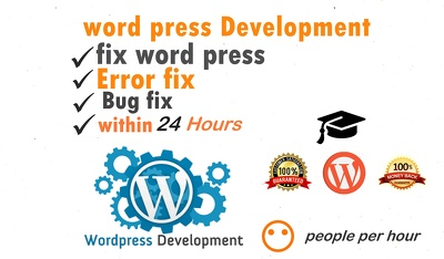 I Can Fix Wordpress Errors, Issues And Customize Wordpress Theme