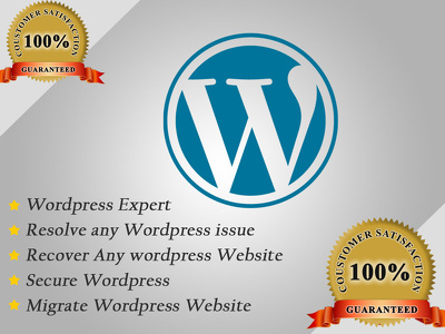 Resolve any wordpress and woocommerce Issue within 1 Hourlie.