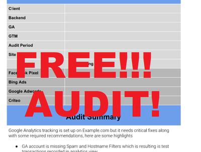 "Perform Free Google Analytics ""Quick Audit"""