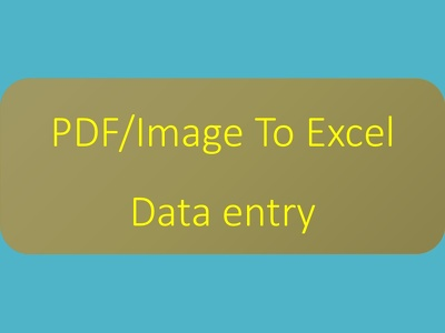 Do up-to 200 rows & 6 clmns data entry into excel from PDF/image