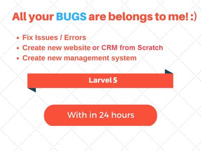 1 hour of customization to PHP | Laravel | CodeIgniter | Magento