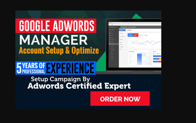 I Will Set Up Your Google Adwords Campaign
