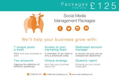 Manage & grow your business's social media platforms!