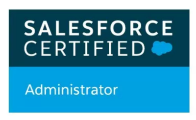 Provide Salesforce.com Ad-hoc support (1 hour)