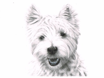 Create a 6in x 8in graphite portrait of a friend, family, pet.