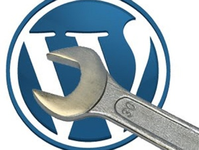 Fix wordpress issues in a hour