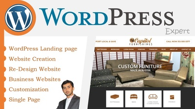 Develop and customize a wordpress website exactly you want