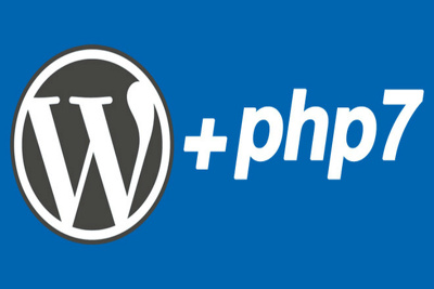 Develop Wordpress or Custom Php website for