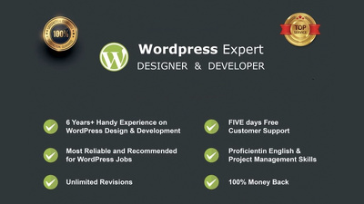 Design fast, responsive, SEO friendly Wordpress website