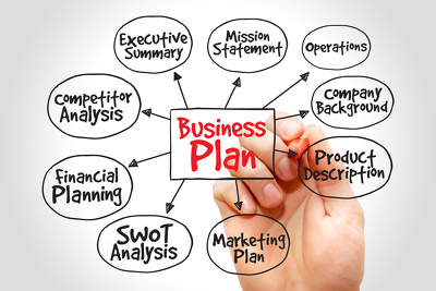 Write professional business plan for startup businesses