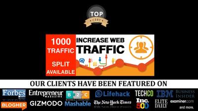Deliver 1000  International Website Visitors - traffic