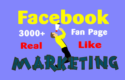 Grow and Manage Your Facebook Fan Page Instantly
