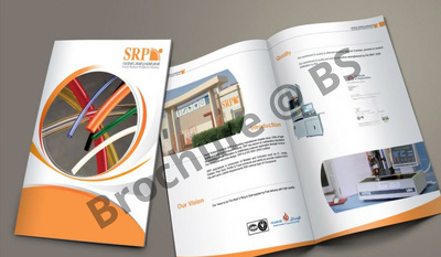 Provide fantastic customized modern & classy brochure super-fast