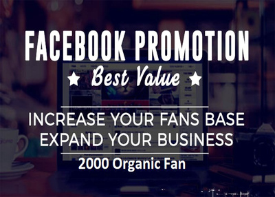 Promote Your Facebook Page Professionally