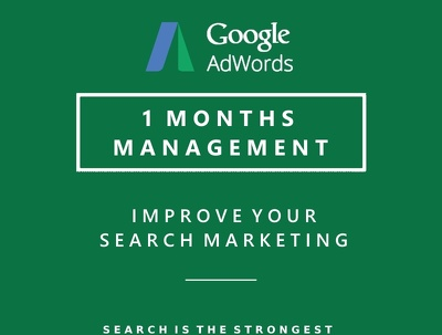 Manage Your AdWords Campaigns For One Month