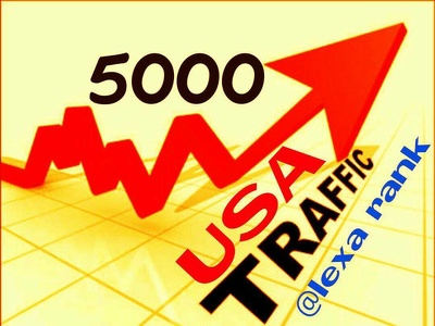 Drive 5000 USA traffic for your Websites or Blogs Alexa ranking