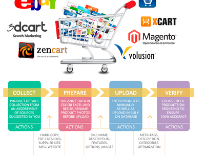 Manually upload 50 product into your e-commerce website