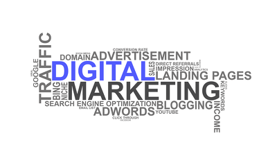 Provide admin support of digital marketing services(SEO,SEM etc)