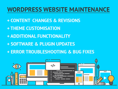 Provide one hour of WordPress website maintenance