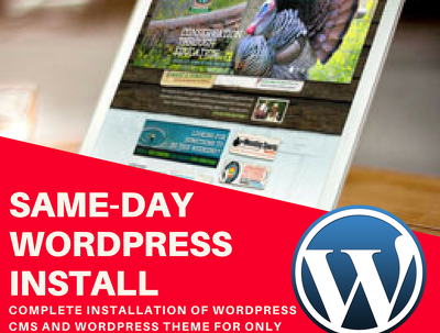 Install Wordpress on your hosting and Install Your Theme