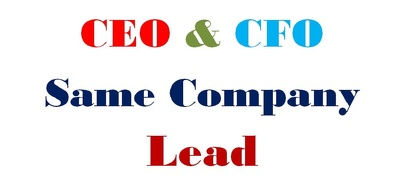 Collect same company CEO&CFO 200 Valid Leads