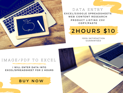 Provide 2 hours of Data Entry