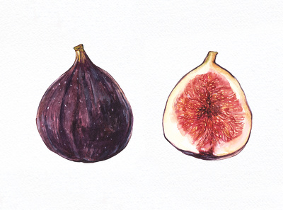 Paint realistic fruits and vegetables in watercolor