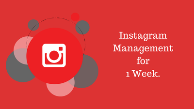 Instagram Real Targeted Engagement & Organic Growth (2 Months)
