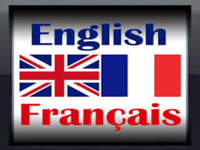 Your translator for FRENCH to ENGLISH and vice versa(500 words).
