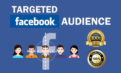 Setup Facebook Ad Campaigns - Get Traffic, Leads & Sale