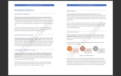 Write a DETAILED PROFESSIONAL Business Plan & Financial Forecast