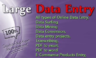 Do all type of data entry work.